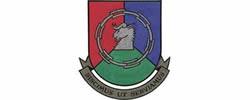 Drakensberg Insurance Institute